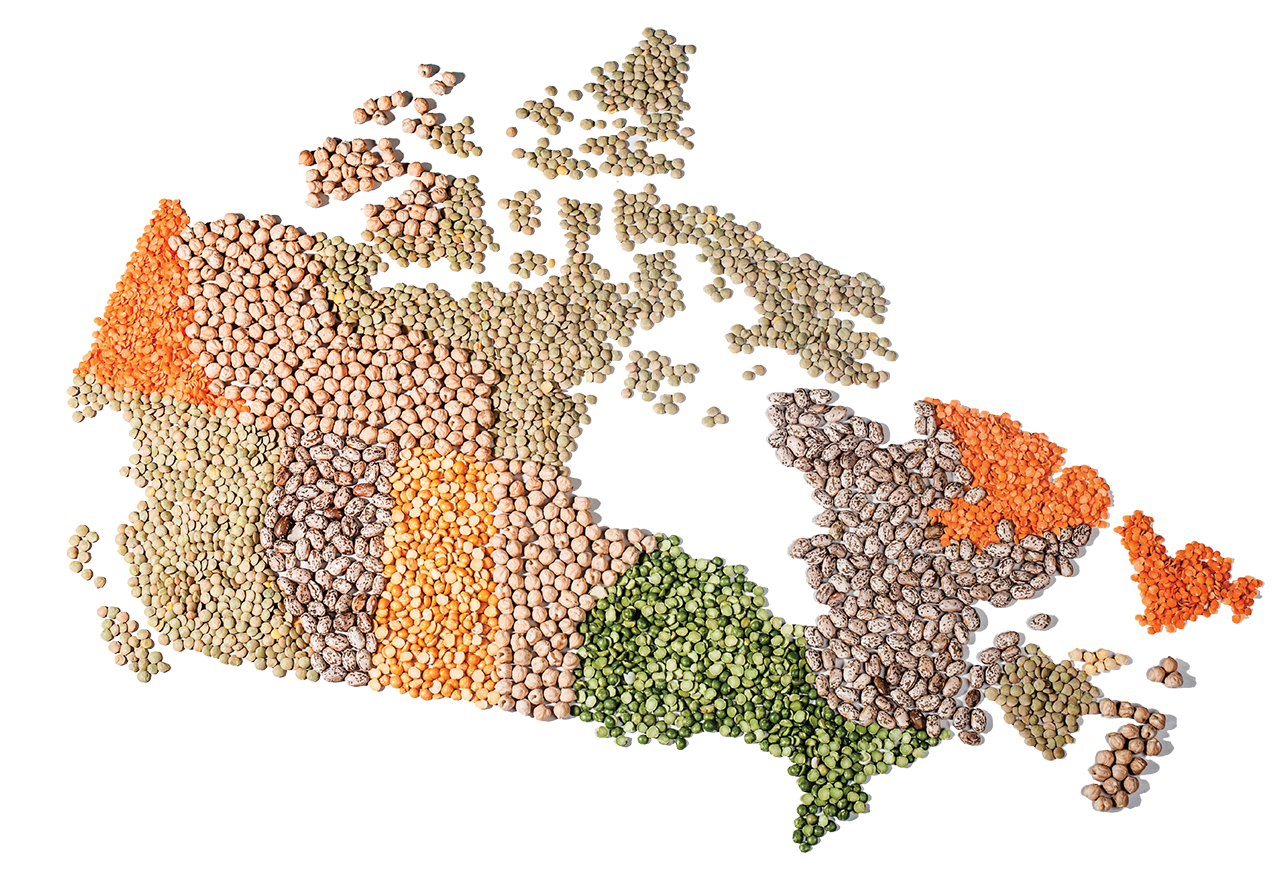 12th Canadian Pulse Research Workshop [illustration of a map of Canada using pulses]