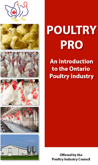 poultry pro, an introduction to the ontario poultry industry with a collage of images of poultry
