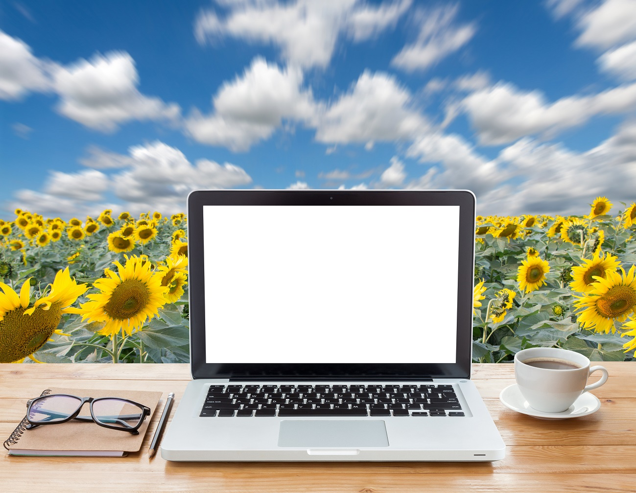 Picture of laptop, glasses and coffee cup on desk with sunflowers and sky in background.